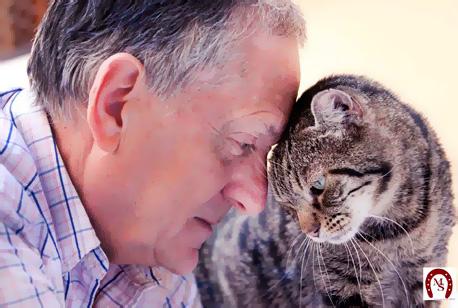 Giorgio and Jack il gatto