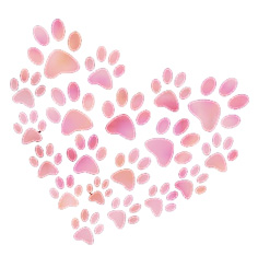 paw-heart