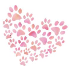 paw-heart