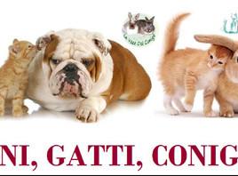 "Voci dal Silenzio, Assoc. Naica - Ott 2015 ""Cani, Gattie, Conigli"""