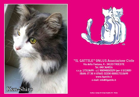 "Assoc Il Gattile onlus (Trieste). calendario""Poveri ma belli 2018"""
