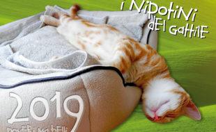 "Calendario ""Poveri ma belli 2019"", Ass. Il Gattile onlus (Trieste)"