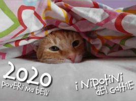 Calendario Assoc. Il Gattile (Trieste) 2020